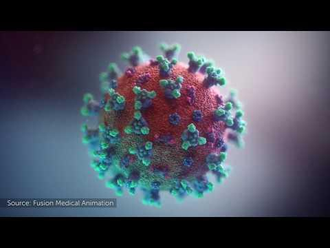 Embedded thumbnail for E dopo il coronavirus?